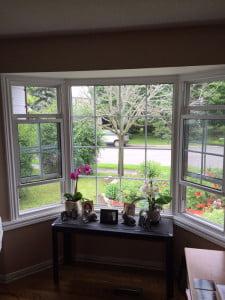 bay windows ottawa