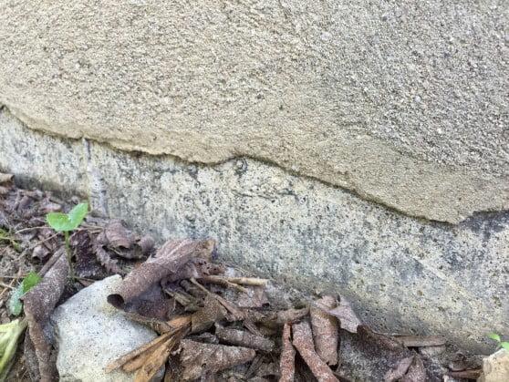 foundation maintenance parge