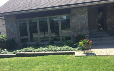 Windows: Enhancing Your Home's Beauty