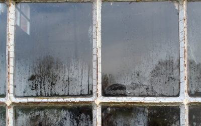 Not sure if your windows need replacing?