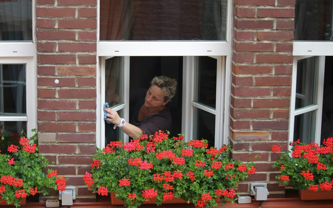 Spring Window Maintenance